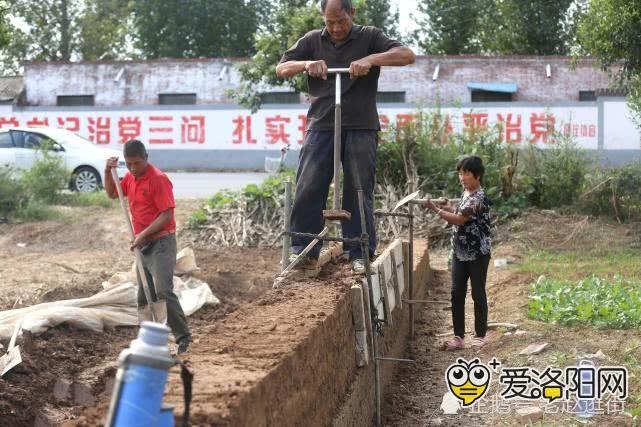 六旬父亲夯土墙为城里儿子结婚攒钱!