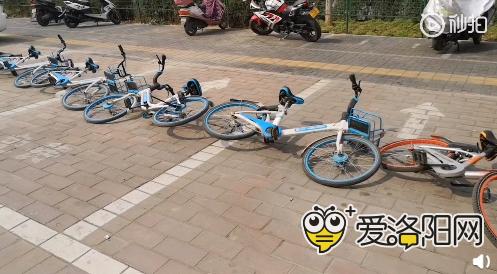 这共享单车怎么开始沦为占车位的工具了,太缺德了吧